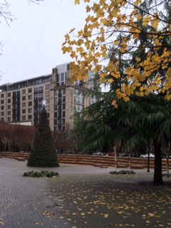 Jamison Park in Portlands Pearl District